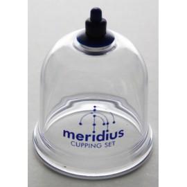 Meridius cup (55mm)