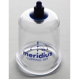Meridius cup (43mm)